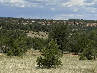 LOTS 15-16 BRANDING IRON, Ramah, NM 87321 - Photo 1
