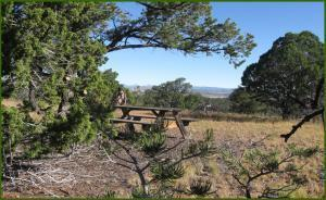 48 BRIDGER PASS, Datil, NM 87821 - Photo 1