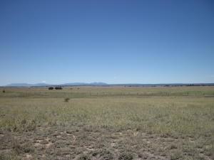 113 ECHO RIDGE RD, Moriarty, NM 87035 - Photo 1