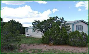 98 TANGLEWOOD CIR, Datil, NM 87821 - Photo 1