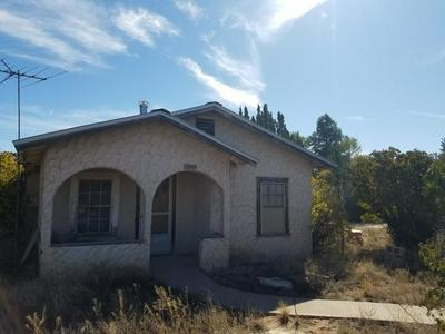 310 N ROOSEVELT AVE, Mountainair, NM 87036 - Photo 1