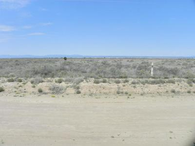 0 BORROUGHS ROAD, MCINTOSH, NM 87032 - Photo 1