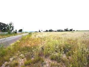 MARSHALL ROAD, MCINTOSH, NM 87032 - Photo 2