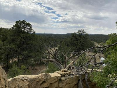 LOTS 10-11 OLD WELL ROAD, Ramah, NM 87321 - Photo 1