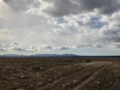 ESPEJO AVENUE, MCINTOSH, NM 87032 - Photo 2