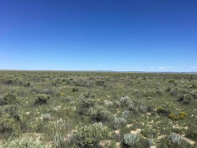 WILLOW LAKE ROAD, MCINTOSH, NM 87032 - Photo 1