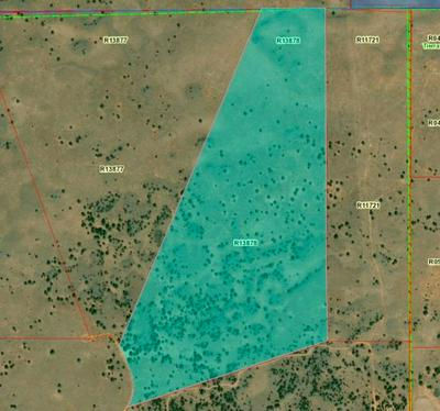 TRACT 4 JAMES VALLEY RANCH, Ramah, NM 87321 - Photo 2