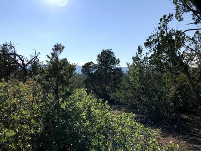 LOST VALLEY LOOP, Cedar Crest, NM 87008 - Photo 2
