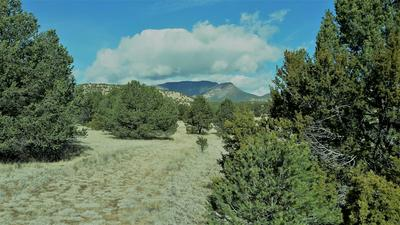 88 RUTTER RANCH RD, Datil, NM 87821 - Photo 1