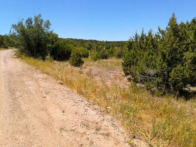 7 BELLE STARR RD, Edgewood, NM 87015 - Photo 2