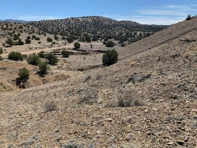 59 FOREST ROAD 123, Magdalena, NM 87825 - Photo 1