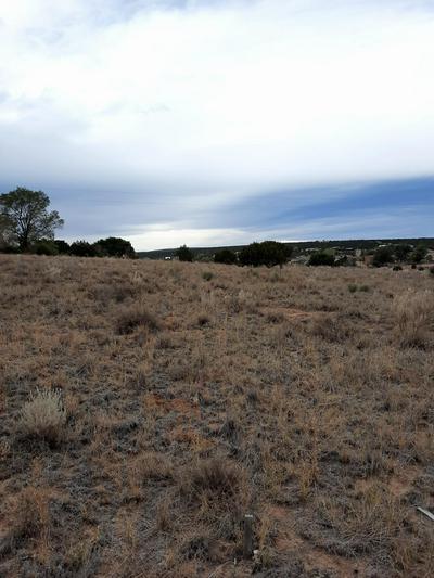 17 KENNEDY RD # B, Edgewood, NM 87015 - Photo 2