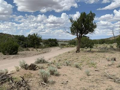 FOREST RD 123-BURCITO RD. ROAD, Magdalena, NM 87825 - Photo 2