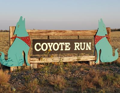 COYOTE LOOP, Moriarty, NM 87035 - Photo 1