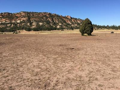 LOT 11 BOX S RANCH ROAD, Ramah, NM 87321 - Photo 1