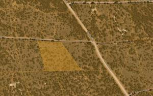 LOT 4 YUCCA, Ramah, NM 87321 - Photo 2