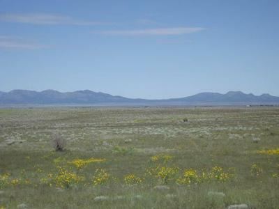 520 B ANAYA RD, Stanley, NM 87056 - Photo 1