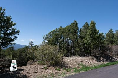 16 LOS PECOS TRL, Tijeras, NM 87059 - Photo 2