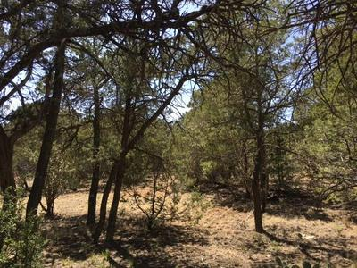 0 MOUNTAIN VALLEY, Tijeras, NM 87059 - Photo 2