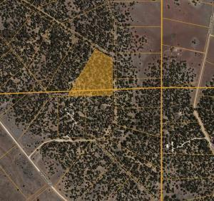 LOT 21 ROADRUNNER DRIVE, Ramah, NM 87321 - Photo 2