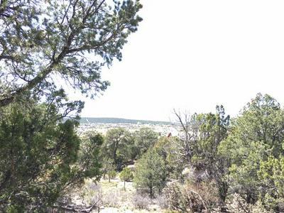 0 COUNTY LINE ROAD, Edgewood, NM 87015 - Photo 2