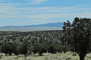 44&45 ROCK SPRINGS LOOP, Datil, NM 87821 - Photo 2
