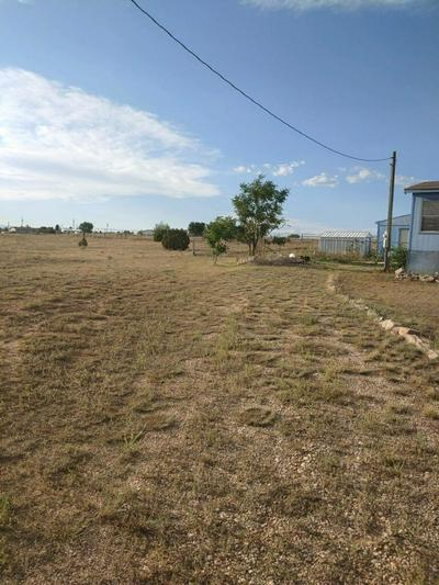11 JULIE PL, Edgewood, NM 87015 - Photo 2
