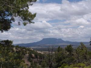 244 COMEBACK WAY, Datil, NM 87821 - Photo 2