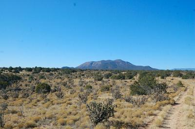 125 COW MILL RD, STANLEY, NM 87056 - Photo 2