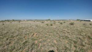 VALLE VERDE RD. S, MCINTOSH, NM 87032 - Photo 2