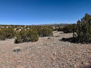 168 PINON SPRINGS RD, Magdalena, NM 87825 - Photo 2