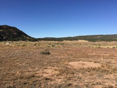 LOT 5 BOX S RANCH ROAD, Ramah, NM 87321 - Photo 1