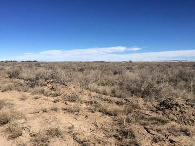 0 SPRING GROVE, McIntosh, NM 87032 - Photo 2