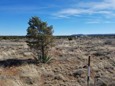 805 ROSS AVE S, Mountainair, NM 87036 - Photo 2