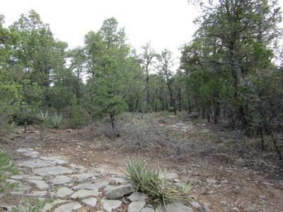 70 ANAYA RD, Tijeras, NM 87059 - Photo 2