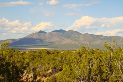 79 CREEKSIDE TRL, Sandia Park, NM 87047 - Photo 1