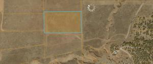 LOT 11 BOX S RANCH ROAD, Ramah, NM 87321 - Photo 2