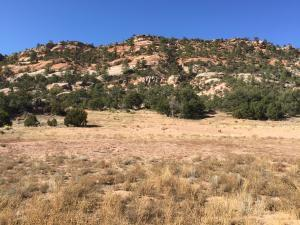 LOT 4 BOX S RANCH ROAD, Ramah, NM 87321 - Photo 1