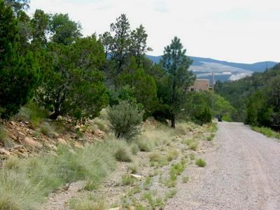 VISTA DEL CIELO PLACE, Cedar Crest, NM 87008 - Photo 1