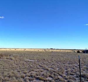 17 MORNING STAR RD, Estancia, NM 87016 - Photo 1