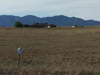 CRAVENS (15 LOTS) COURT, STANLEY, NM 87056 - Photo 1