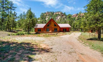65 CONEJO DRIVE, Ramah, NM 87321 - Photo 1