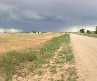 TRACT C MEADOW ROAD, Moriarty, NM 87035 - Photo 2