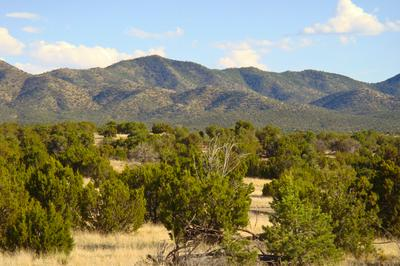 79 CREEKSIDE TRL, Sandia Park, NM 87047 - Photo 2
