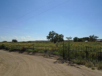 WINERY ROAD, Bosque, NM 87006 - Photo 1