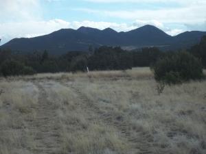 385A GOLDMINE RD # B, Cerrillos, NM 87010 - Photo 1