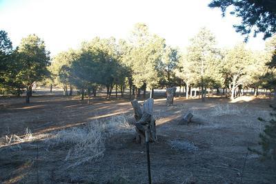 57 CASTLE ROCK PARK RD LOT 1, Quemado, NM 87829 - Photo 2
