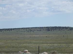 520 B ANAYA RD, Stanley, NM 87056 - Photo 2