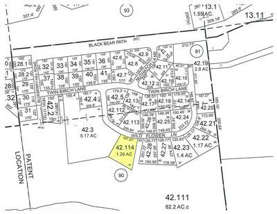 00 WILDFLOWER LANE, Morrisonville, NY 12962 - Photo 1