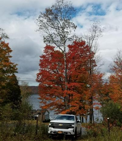. BOOMHOWER ROAD, Lyon Mountain, NY 12952 - Photo 1
